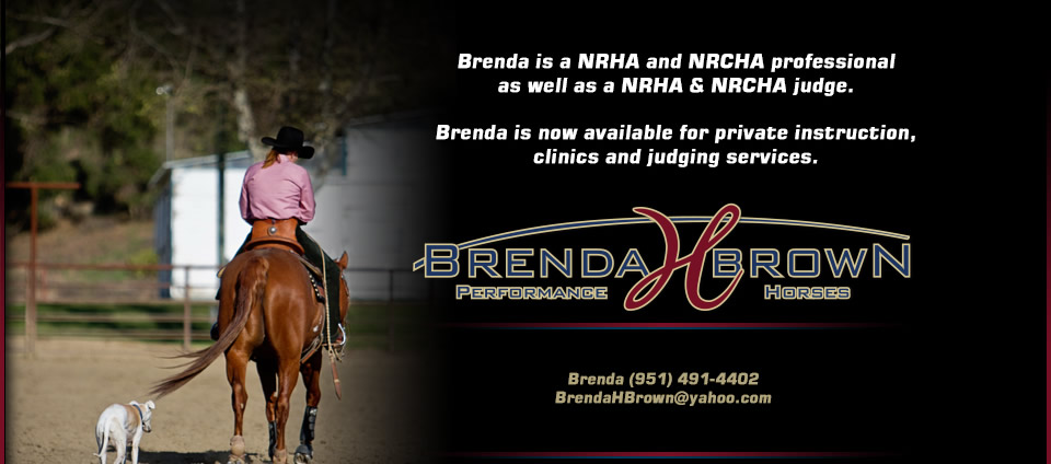 Brenda H Brown Performance Horses